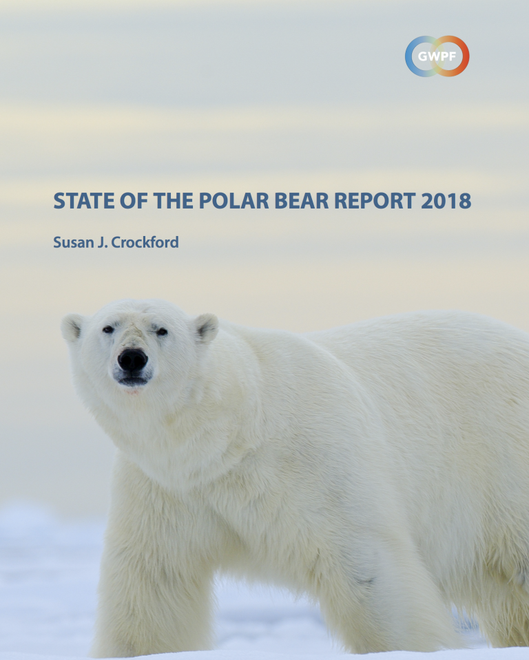 STUDY: Polar Bear numbers reach new highs – Population increases to the highest levels in decades