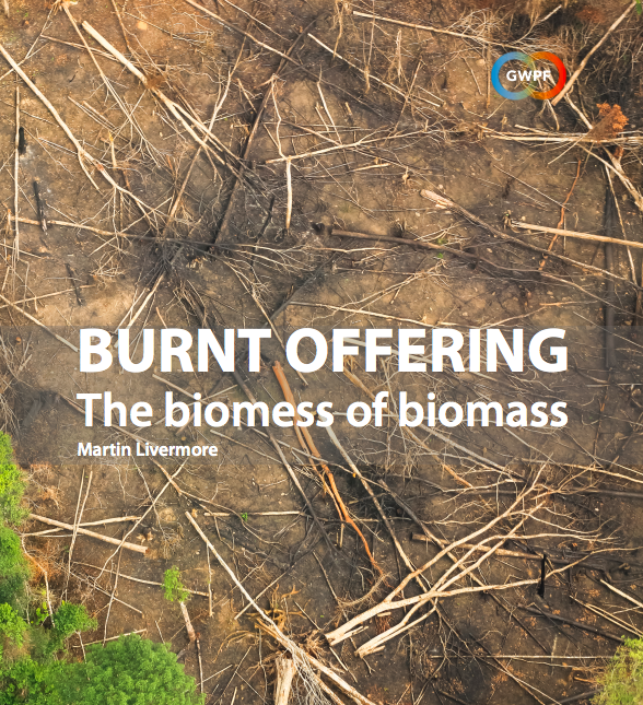 Image result for GWPF biomass